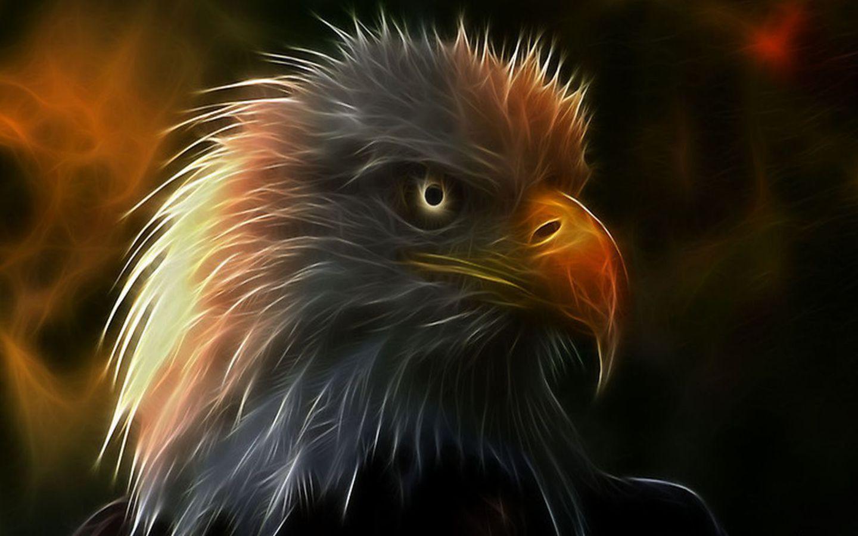 Огненной орел обои
